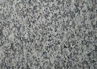 Building Material Granite Stone Tiles / Slab Different Sizes Optional