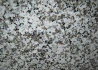 G439 Royal Whit Rosa Classico Bianco Sardo Bianco Rio Big White Flower Paulin White Light Grey Granite stone tiles slabs