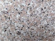Granites Natural Stone Slabs Polished Finish 240up X1200up X 2cm Big Slabs